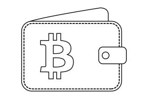 Bitcoinové peněženky